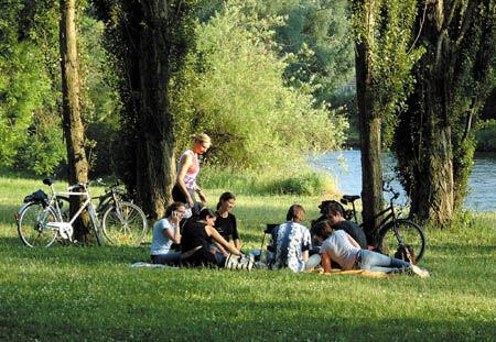 Picknick am Main bei Würzburg